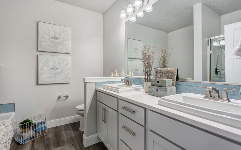 4466_Corvina_St_1.15.19_22_Master_Bathroom